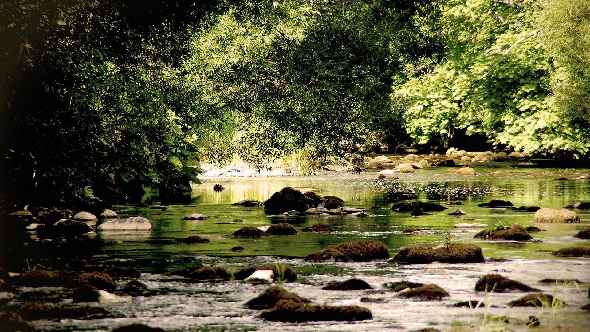 river_bkgrnd